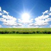 Як перевести землі сільгосппризначення