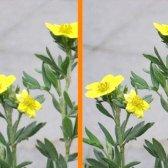 Як збільшити різкість на зображенні