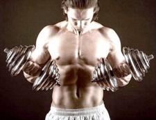 Як наростити масу м'язів