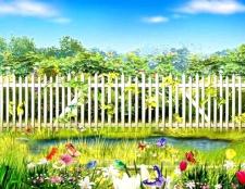 Як оформити паркан