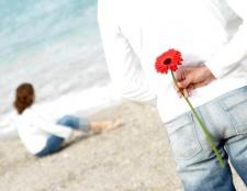 Які квіти подарувати дружині