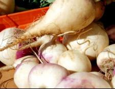 Корисні властивості брукви