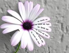 Як зрозуміти, люблять тебе чи ні