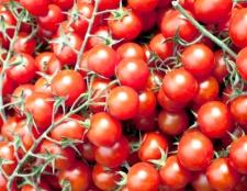 Як пройшла «битва на помідорах» в Іспанії