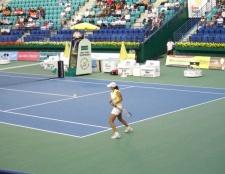 Літні олімпійські види спорту: теніс
