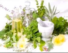 Ефективне лікування бронхіту народними засобами